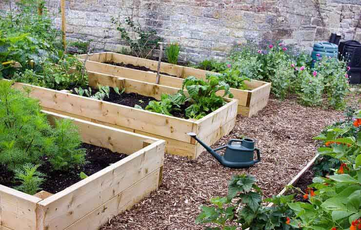 Garden Soil - Go with a Raised Bed