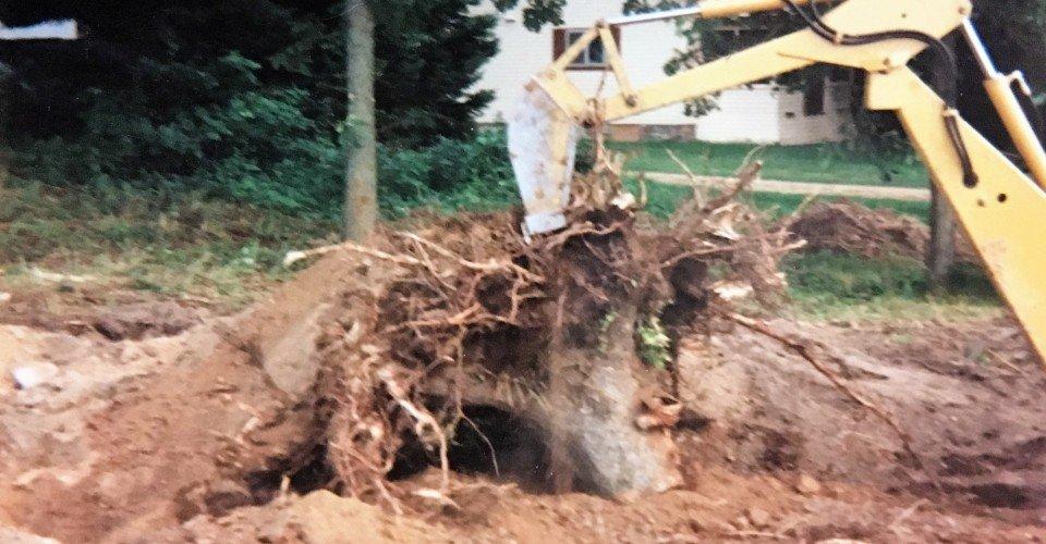 Small Bulldozer stump removal