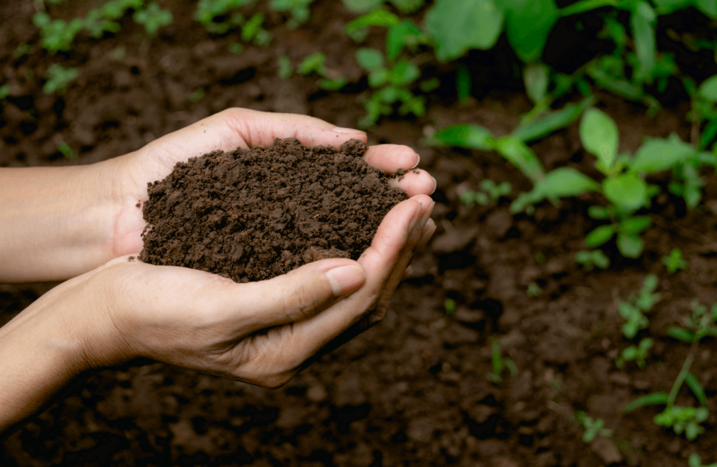 Use the Right Ratio of Products, composting at home