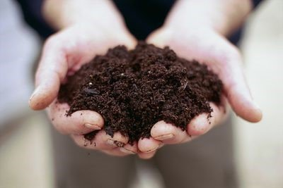 Get Your Soil Ready for Next Spring