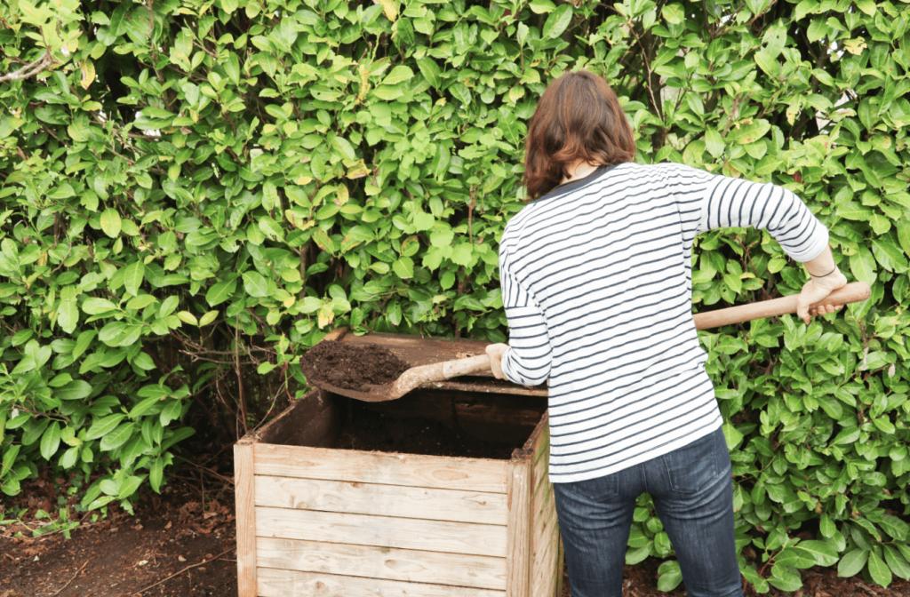 composting at home, Know What You Can (and Can't) Compost