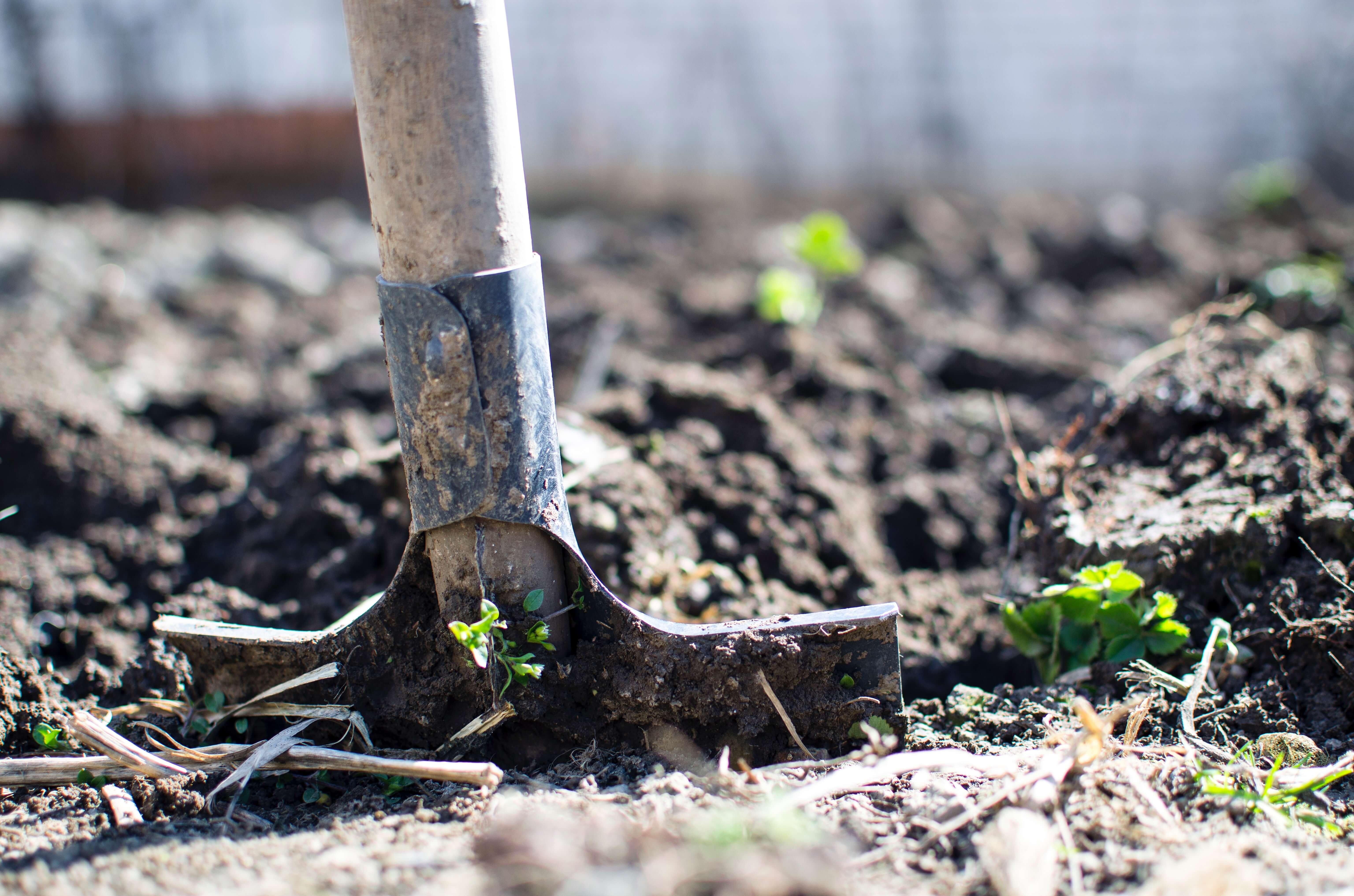 Amend the Soil
